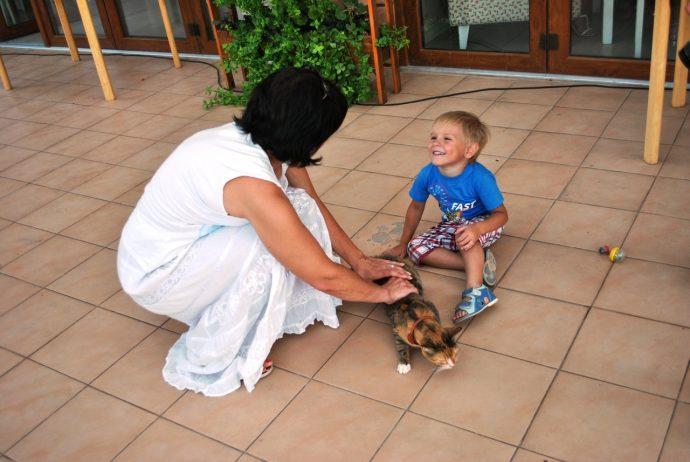 женщина, мальчик и кошка