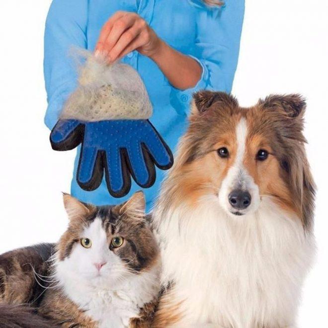 резиновые перчатки для собак