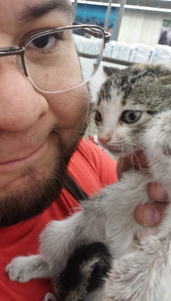 Гилберт и котеночек