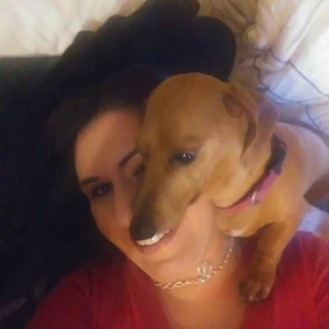 собака с белыми зубами