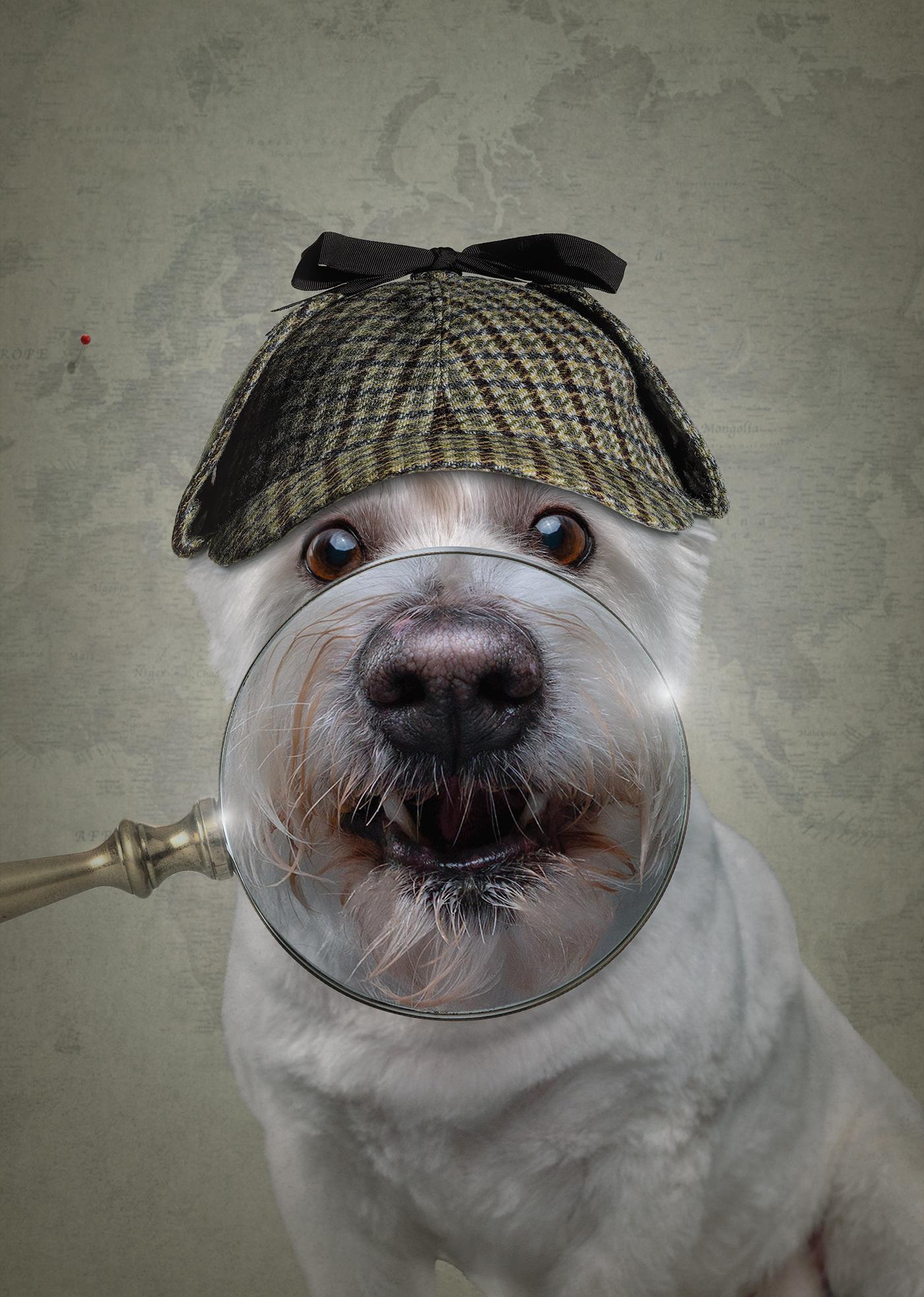 пес с лупой