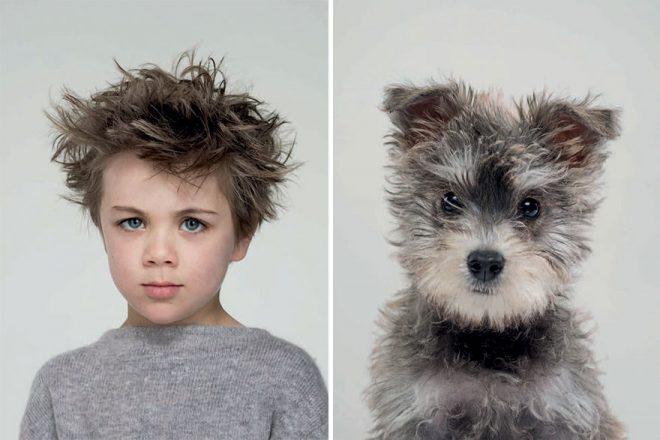 Фото Бенджи с собакой
