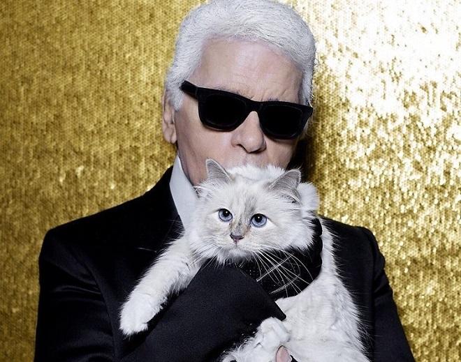 Карл и его кошка