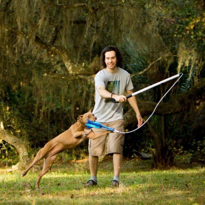 игры с собакой