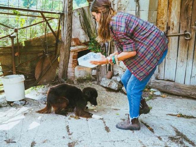 Девушка кормит собаку