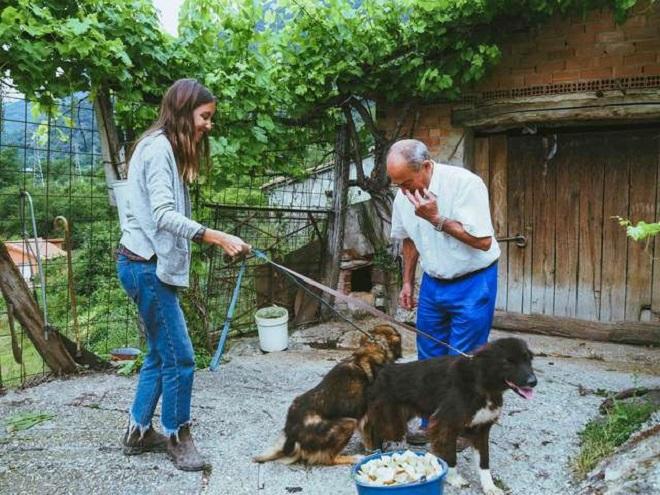 Две собаки и люди