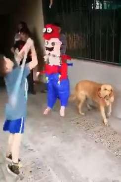 собака рядом с ребенком