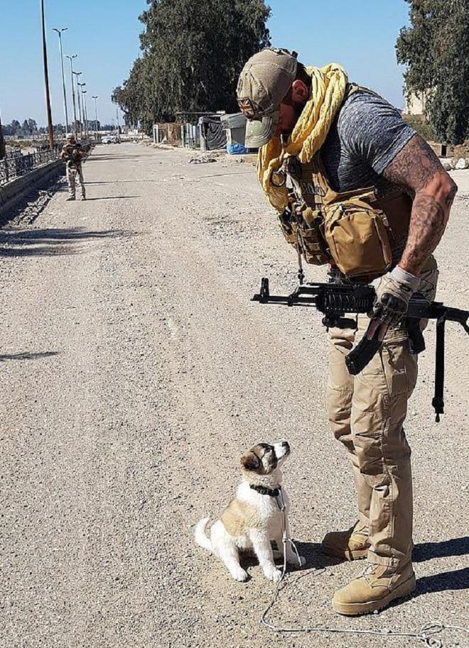Щенок и военный