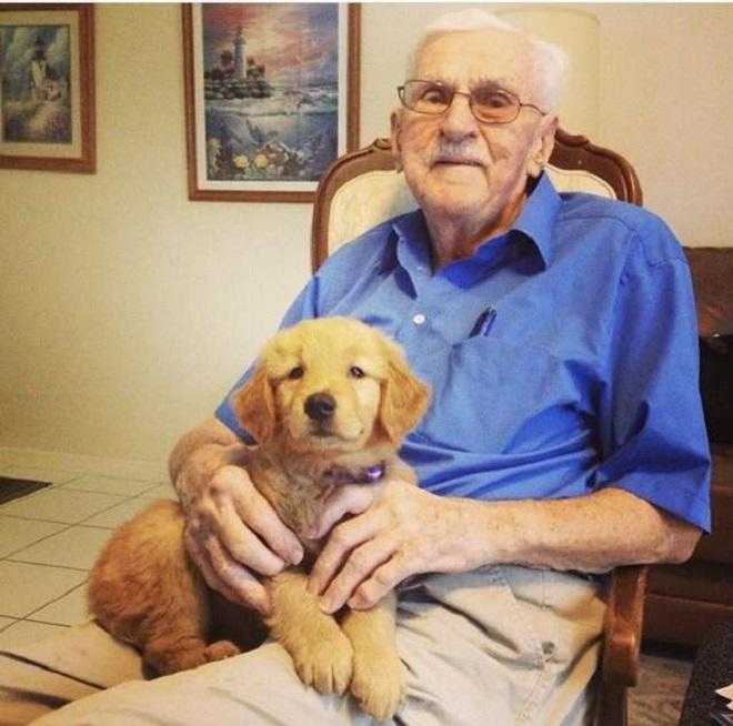 Старик и щенок