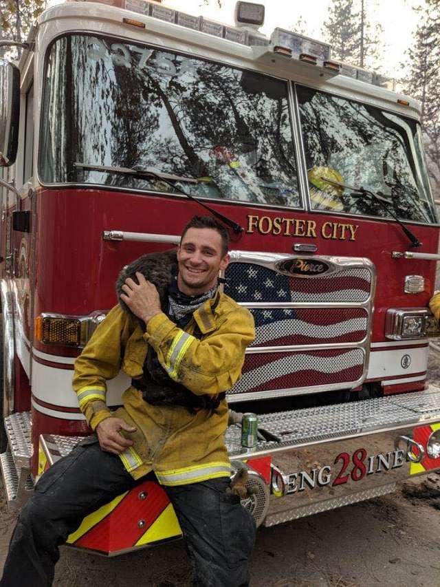 кот у пожарного на плече
