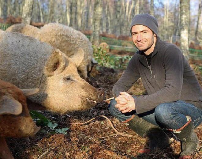 Мужчина и свинки