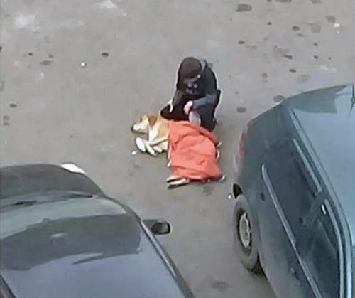 мальчик накрывает собаку курткой