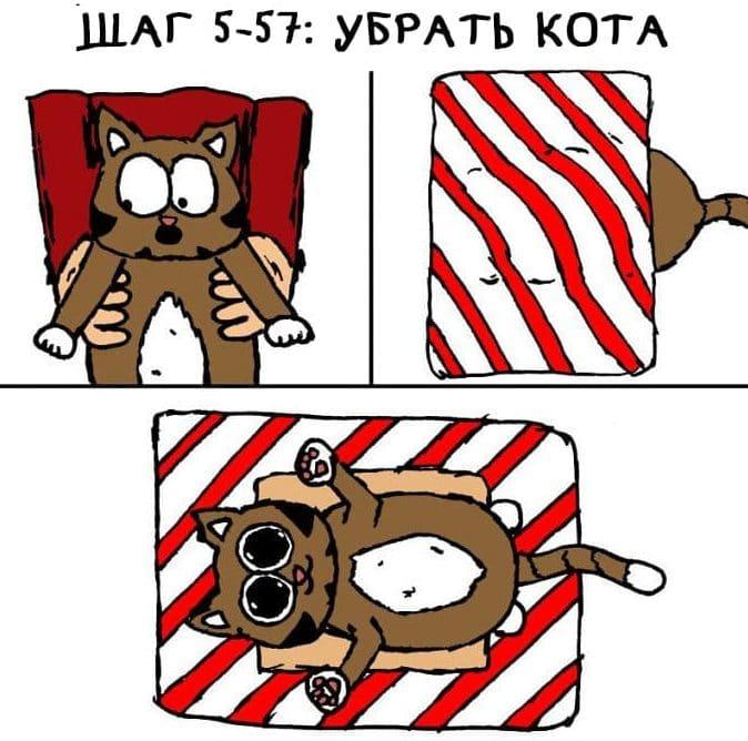 лайфхак с котом