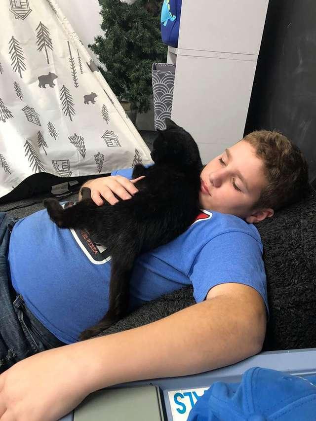 мальчик отдыхает рядом с кошкой