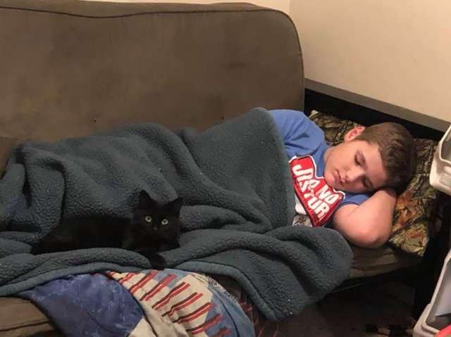 мальчик спит рядом с кошкой