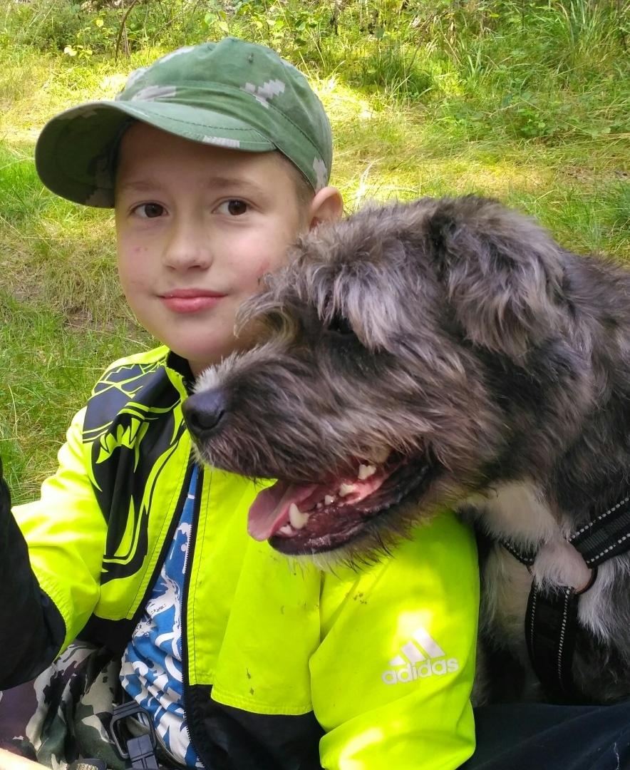 пес с мальчиком
