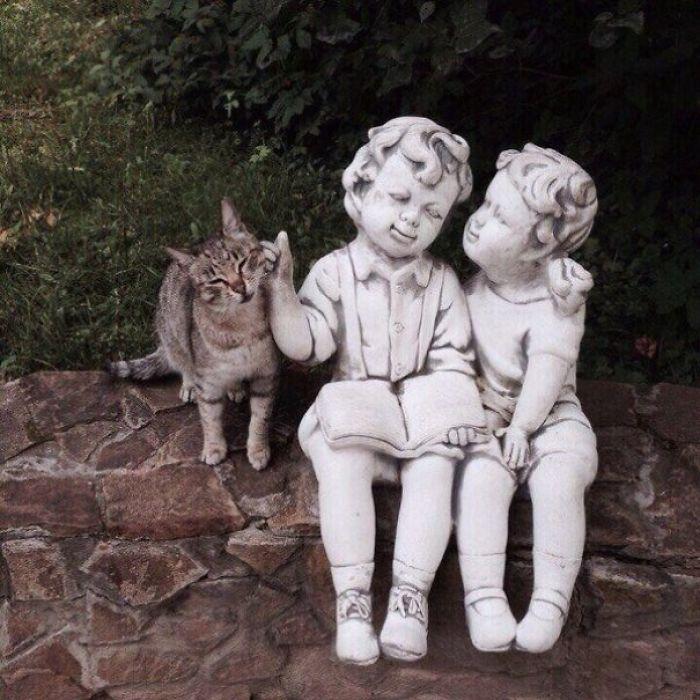 кот и памятник