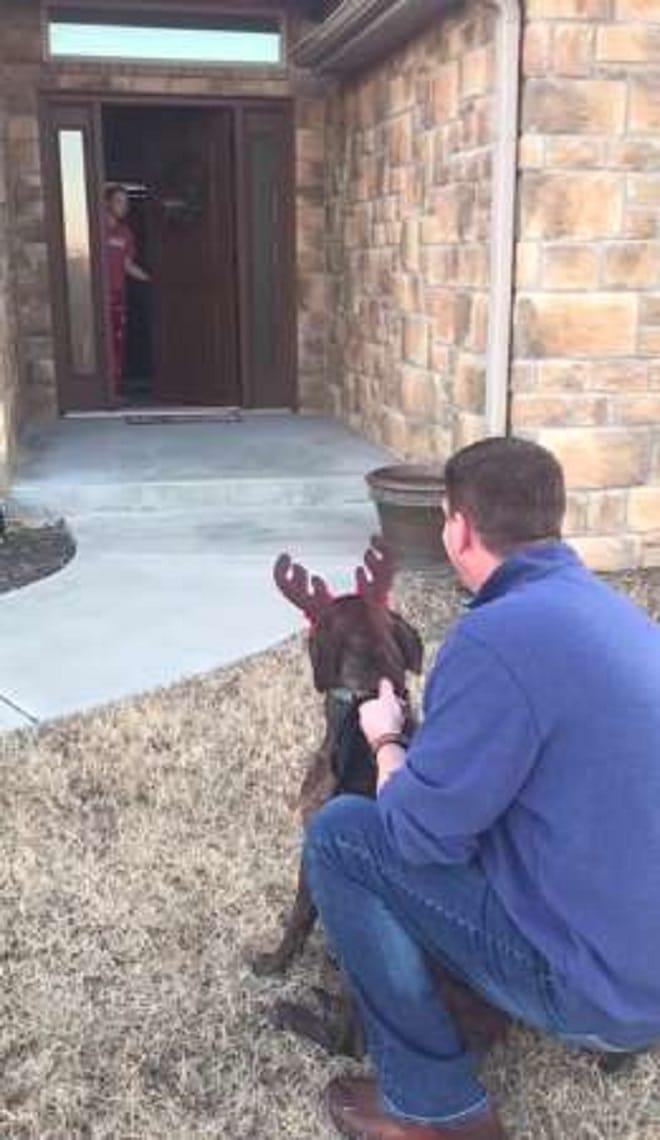 Мужчина сидит с собакой
