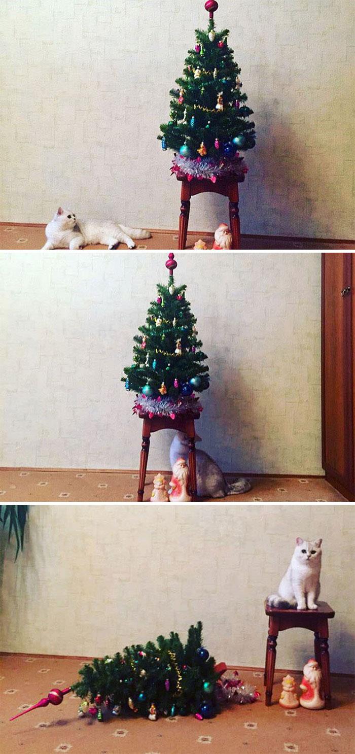 кот опрокинул елку