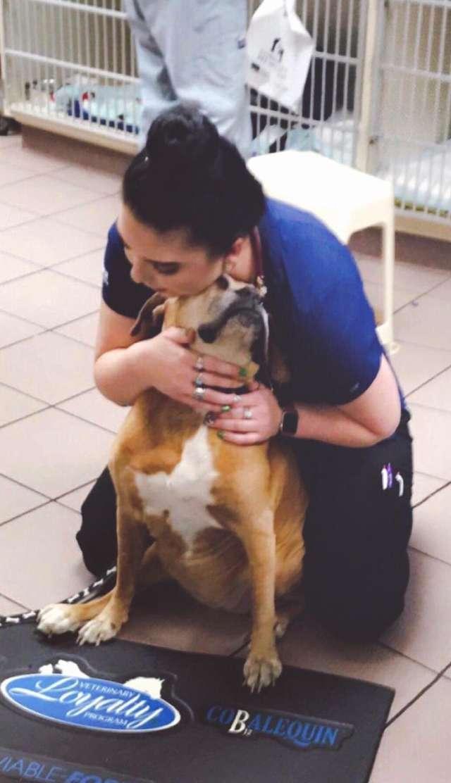 ветеринар обнимает собаку