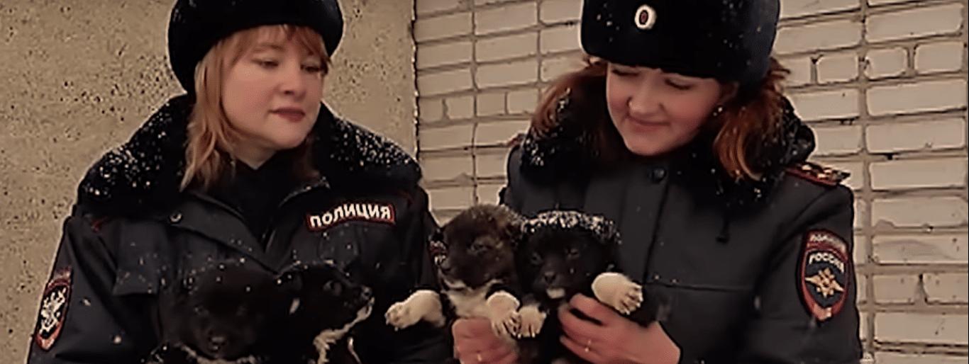 полицейские спасли щенков