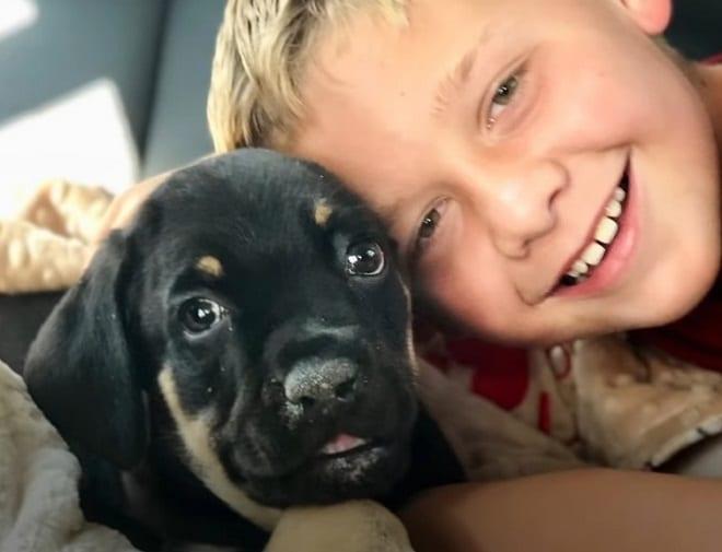 Мальчик и щенок