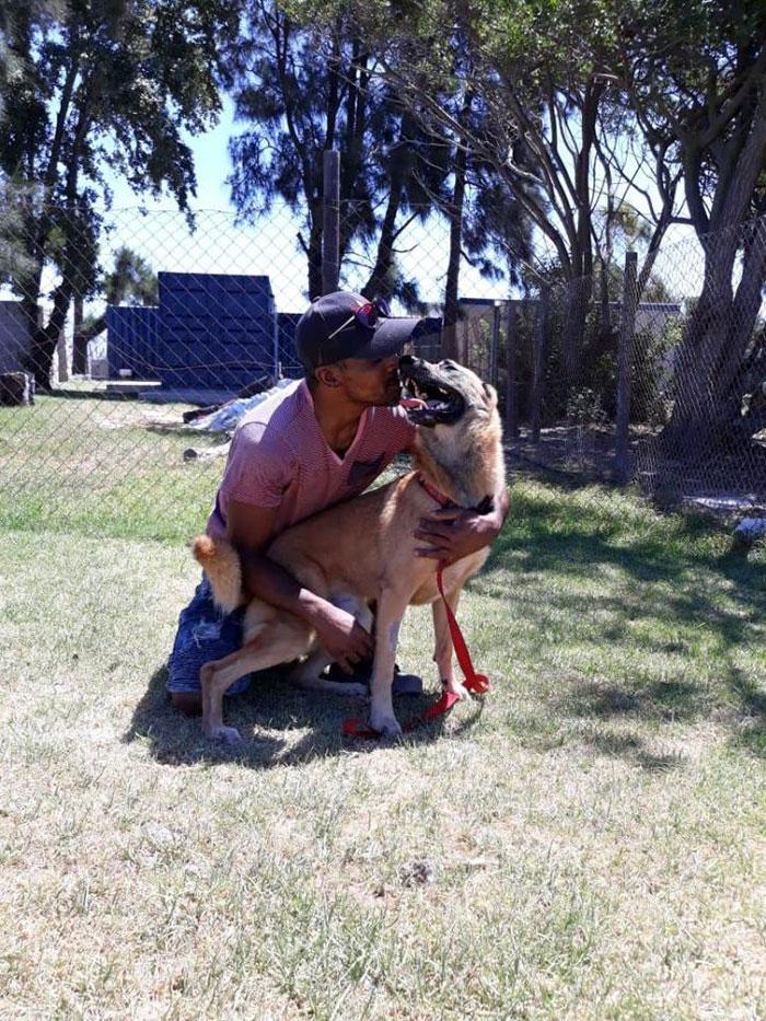 хозяин гуляет с псом