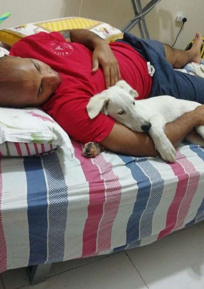 Щенок и мужчина спят