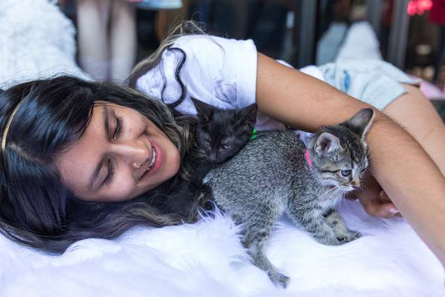 девушка играет с котенком