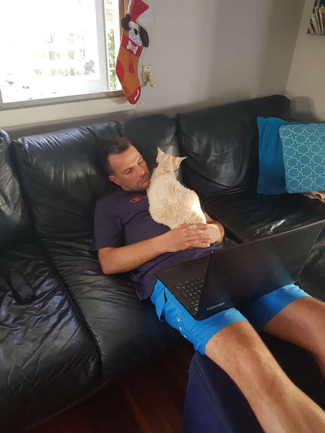 кот с хозяином