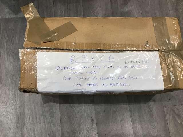 коробка с запиской