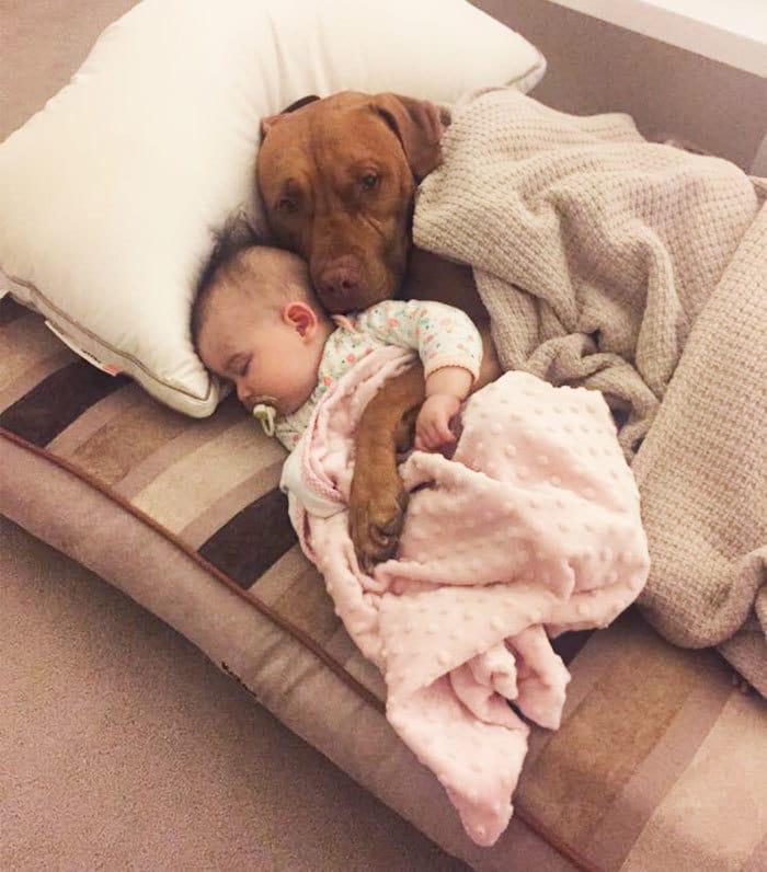 ребенок с собакой рис 3