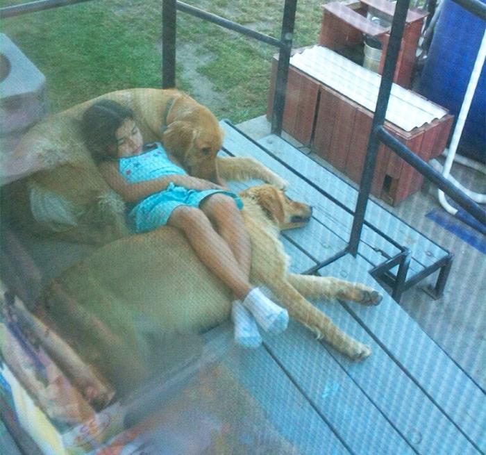 девочка с двумя собаками