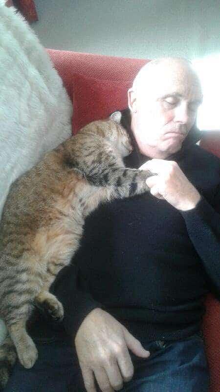 мужчина спит рядом с кошкой