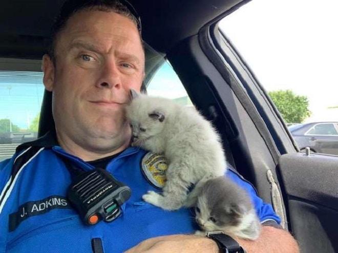 Офицер в машине