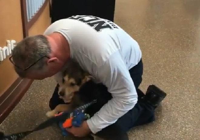 Мужчина обнял собаку