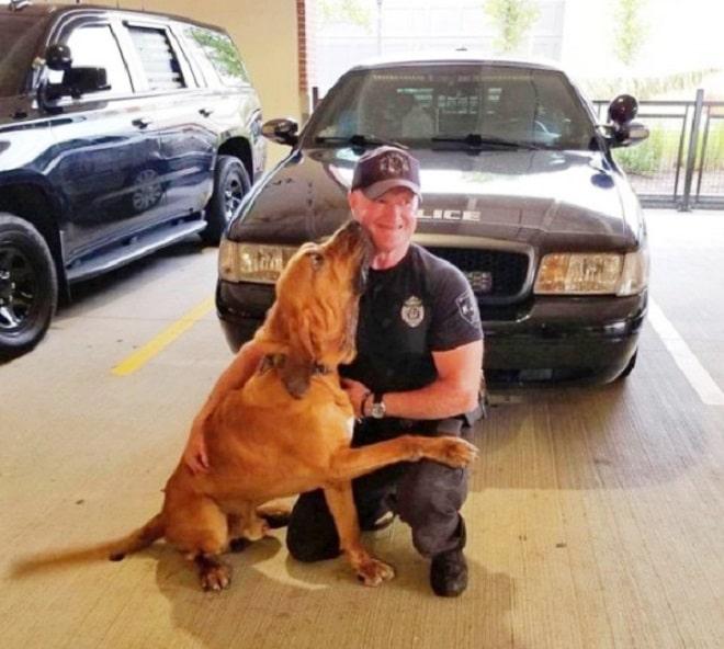 Собака с полицейским