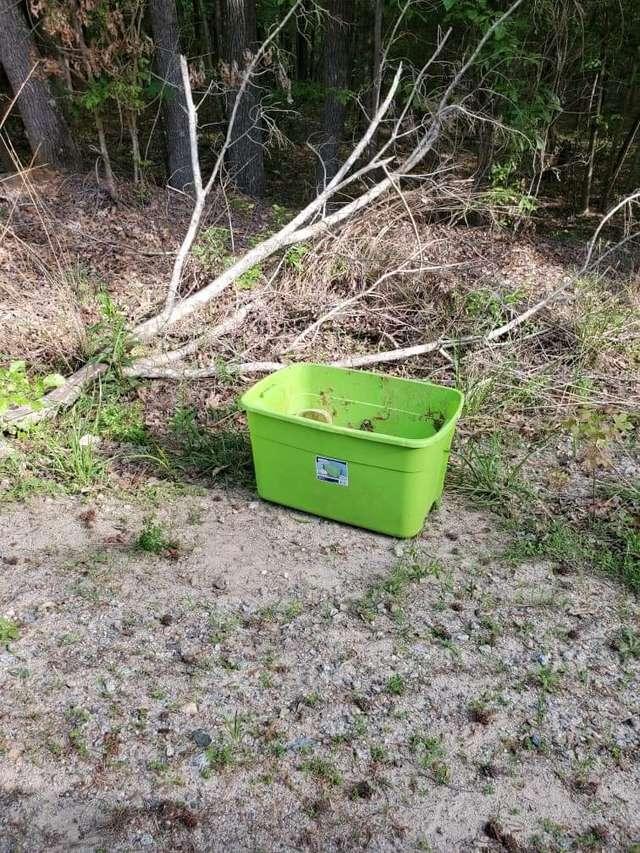 зеленый контейнер