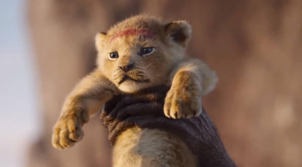 львенок из мультика