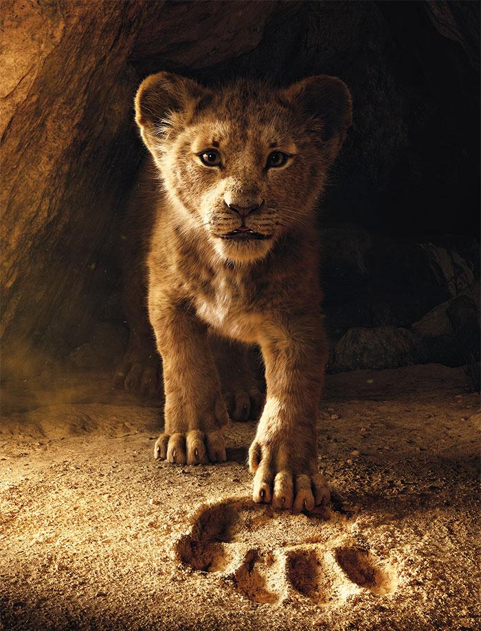 львенок гуляет