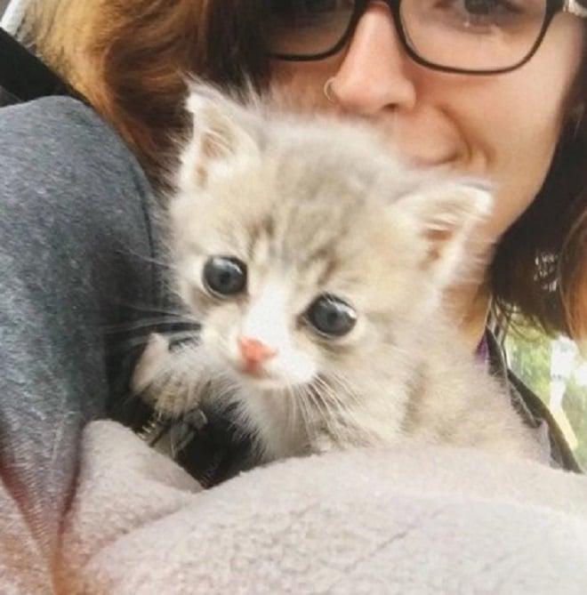 Женщина с котенком