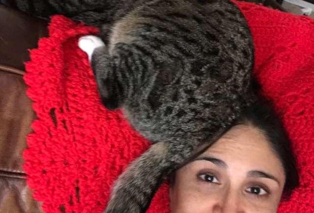 кот с хозяйкой