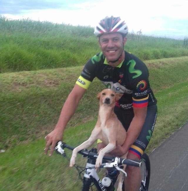 велосипедист с собакой