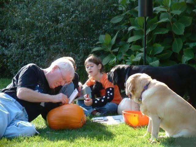 дедушка с собаками