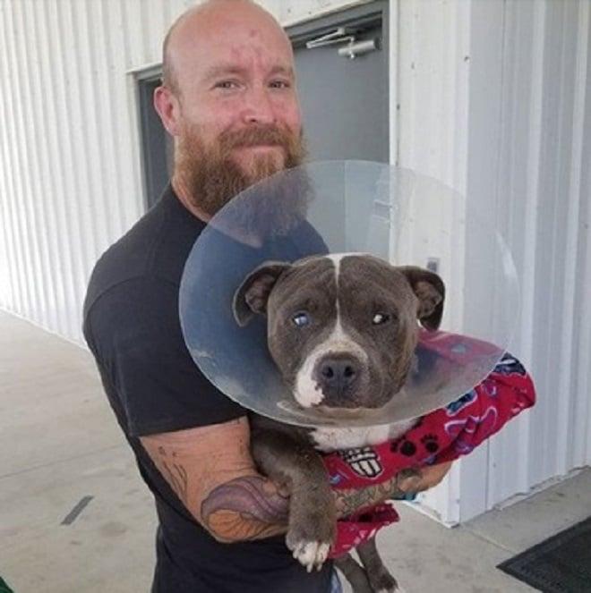 Пес и мужчина
