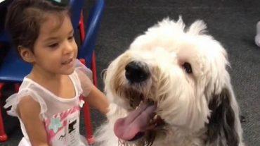 huge dog and girl