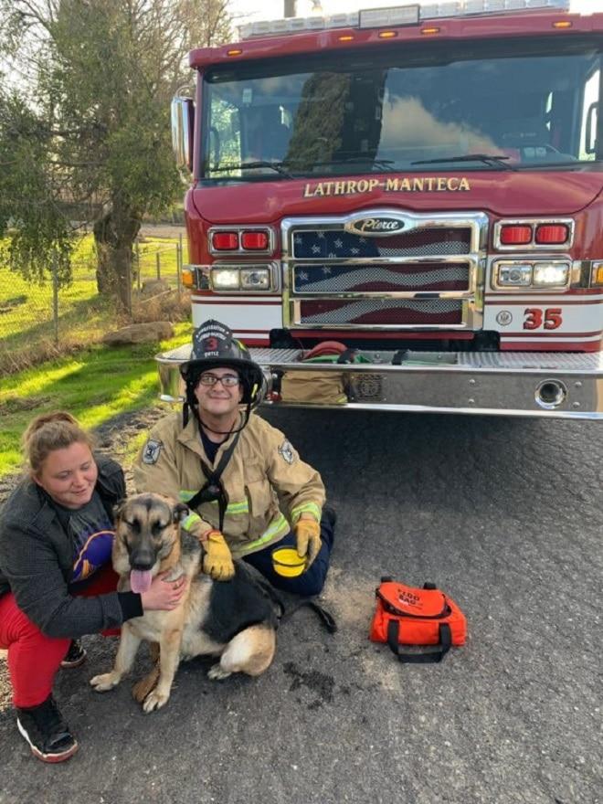 Пожарный женщина и пес