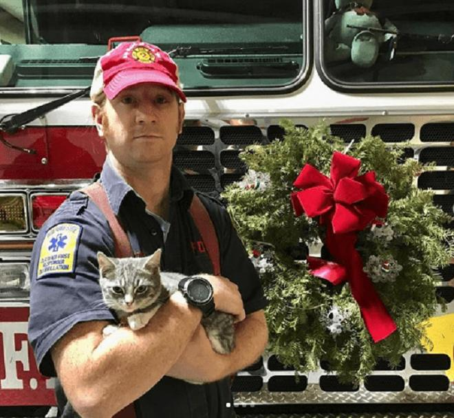 Мужчина с котом на Рождество