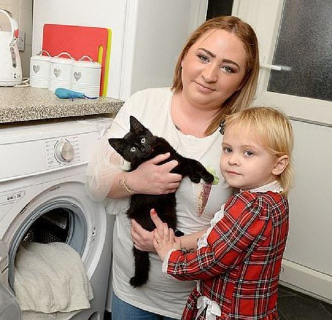 Котенок и семья