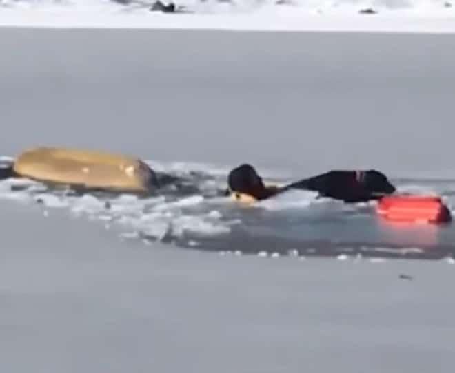 Спасатель в воде